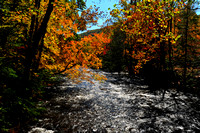 Smokey Mountain Autumn: 2011