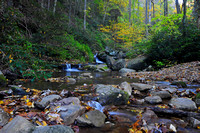 Autumn in Cherokee National Forest